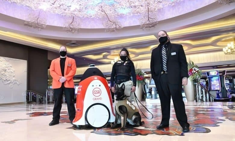 A Northern Nevada Casino Amidst Security Expansion Ropes in a First Robot